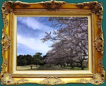 a283 気象台記念公園.jpg